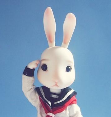 史上最全的小白兔的故事(郁闷时候专用)
